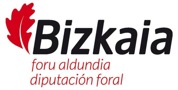 Bizkaiko Aldundiaren logoa